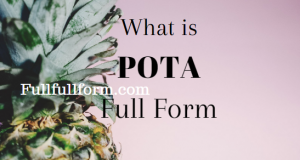 FullFullForm| POTA Full Form, | POTA Acronym, | POTA Abbreviation, | POTA Full Form, | POTA Ki Full Form, | POTA Full Form in Hindi, | POTA Meaning, | POTA Full Form in Hindi, | POTA Ki Hindi Me Full Form, | POTA को हिंदी में क्या कहते है?, | POTA Internet Slang, | POTA Definition, | POTA Definition in Hindi, पोटा फुल फॉर्म.