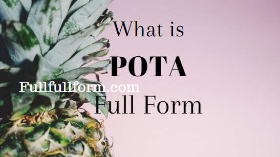 FullFullForm| POTA Full Form, | POTA Acronym, | POTA Abbreviation, | POTA Full Form, | POTA Ki Full Form, | POTA Full Form in Hindi, | POTA Meaning, | POTA Full Form in Hindi, | POTA Ki Hindi Me Full Form, | POTA को हिंदी में क्या कहते है?, | POTA Internet Slang, | POTA Definition, | POTA Definition in Hindi, पोटा फुल फॉर्म.